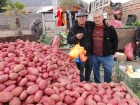 Potato vendors pose for a picture at a government-sanctioned feria libre in the Huachuraba neighborhood of Santiago, Chile.