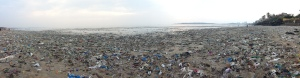 Filth pile that was once a beach