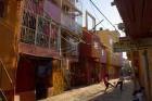 Villa31-my street lifestyle