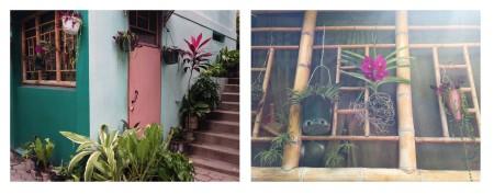 Image 7 Plants in Morne Hercule