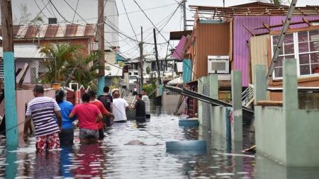 puertoricohurricanedamage- Gris